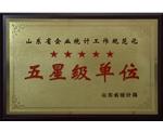 山东省企业统计工作规范化五星级单位