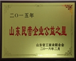 2015年度山东民营企业公益之星